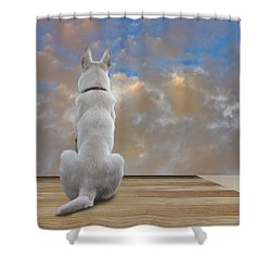 Art Appreciation Shower Curtain by Ron Jones