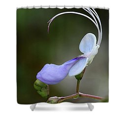 Art In Nature Shower Curtain by Sabrina L Ryan