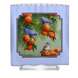 Bird Painting - Bluebirds And Peaches Shower Curtain by Crista Forest