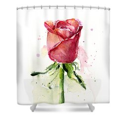 Rose Watercolor Shower Curtain by Olga Shvartsur