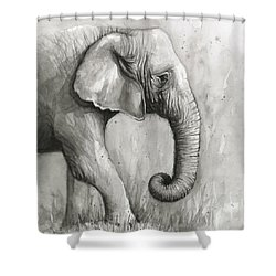 Elephant Watercolor Shower Curtain by Olga Shvartsur