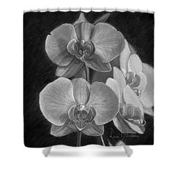 Orchids - Black And White Shower Curtain by Lucie Bilodeau