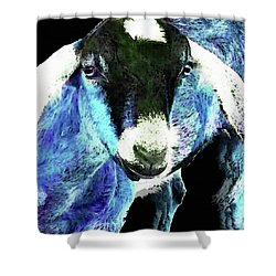 Goat Pop Art - Blue - Sharon Cummings Shower Curtain by Sharon Cummings