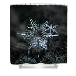 Snowflake Of 19 March 2013 Shower Curtain by Alexey Kljatov
