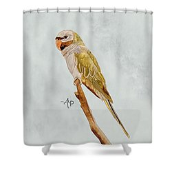 Derbyan Parakeet Shower Curtain by Angeles M Pomata
