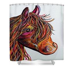 A Stick Horse Named Amber Shower Curtain by Eloise Schneider