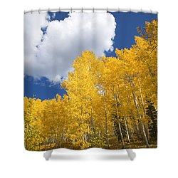 Aspens And Sky Shower Curtain by Ron Dahlquist - Printscapes