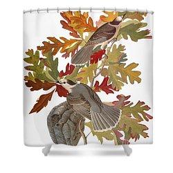 Audubon: Jay Shower Curtain by Granger
