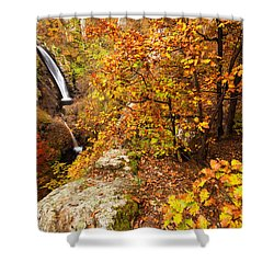 Autumn Falls Shower Curtain by Evgeni Dinev