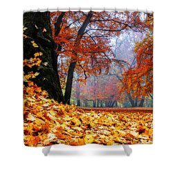 Autumn In The Woodland Shower Curtain by Hannes Cmarits