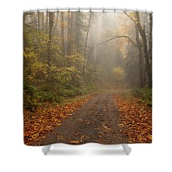 Autumn Lane Shower Curtain by Mike  Dawson