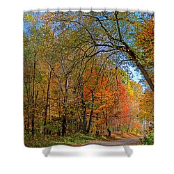 Shower Curtain featuring the photograph Autumn Light by Rodney Campbell