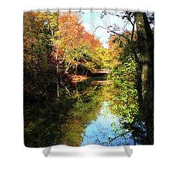 Autumn Park With Bridge Shower Curtain by Susan Savad