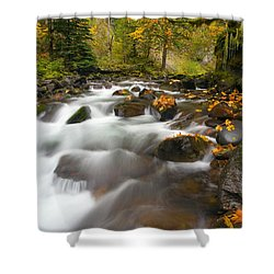 Autumn Passages Shower Curtain by Mike  Dawson