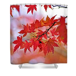 Autumn Pastel Shower Curtain by Kaye Menner