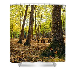 Autumn Scenery Shower Curtain by Carlos Caetano