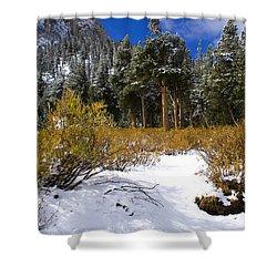 Autumn Snow Shower Curtain by Chris Brannen