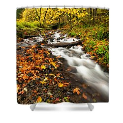 Autumn Split Shower Curtain by Mike  Dawson