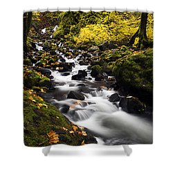 Autumn Swirl Shower Curtain by Mike  Dawson