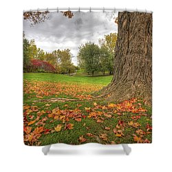 Autumn Tale Shower Curtain by Mircea Costina Photography
