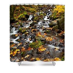Autumn Tumbles Down Shower Curtain by Mike  Dawson