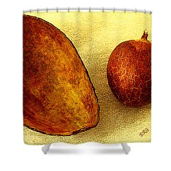 Avocado Seed And Skin II Shower Curtain by Ben and Raisa Gertsberg