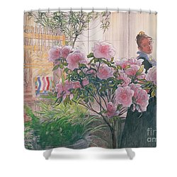 Azalea Shower Curtain by Carl Larsson