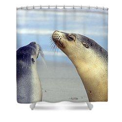 Backtalk Shower Curtain by Mike  Dawson