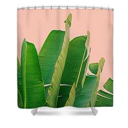 Banana Leaves Shower Curtain by Rafael Farias