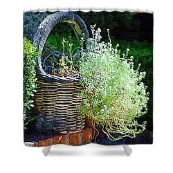 Basket Full Of Flowers Shower Curtain by Donna Bentley