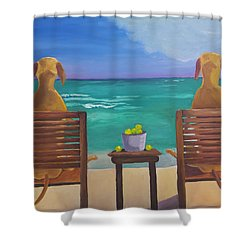 Beach Blondes Shower Curtain by Roger Wedegis