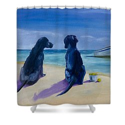 Beach Girls Shower Curtain by Roger Wedegis
