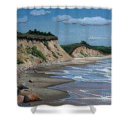 Beach Shower Curtain by Paul Walsh