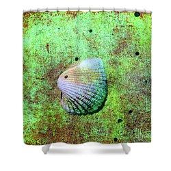 Beach Treasure Shower Curtain by Susanne Van Hulst