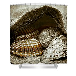 Shower Curtain featuring the photograph Beach Treasures by Frank Tschakert