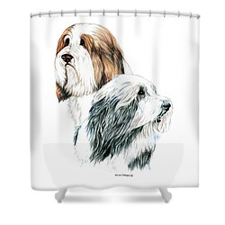 Bearded Collies Shower Curtain by Kathleen Sepulveda