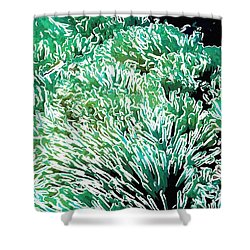 Beautiful Coral Reef 2 Shower Curtain by Lanjee Chee