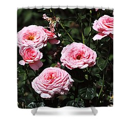 Beautiful Pink Rose L'aimant Shower Curtain by Louise Heusinkveld