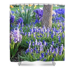 Beautiful Spring Day Shower Curtain by Carol Groenen