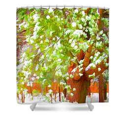 Beautiful Winter Tree Shower Curtain by Lanjee Chee