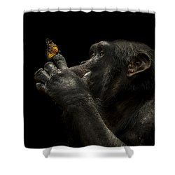 Beauty And The Beast Shower Curtain by Paul Neville