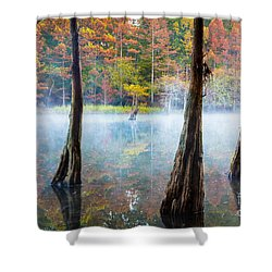 Beavers Bend Cypress Grove Shower Curtain by Inge Johnsson