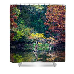 Beavers Bend Trees Shower Curtain by Inge Johnsson