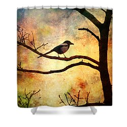 Believing In The Morning Shower Curtain by Tara Turner