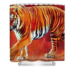 Bengal Tiger  Shower Curtain by Mark Adlington
