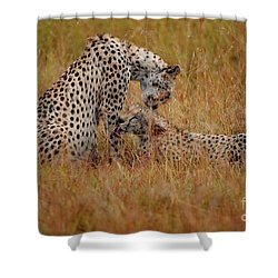 Best Of Friends Shower Curtain by Stephen Smith