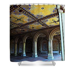 Bethesda Terrace Arcade In Central Park Shower Curtain by James Aiken