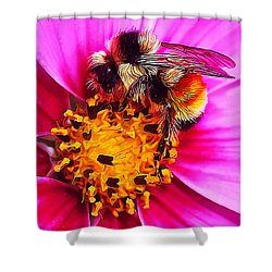 Big Bumble On Pink Shower Curtain by Bill Caldwell -        ABeautifulSky Photography