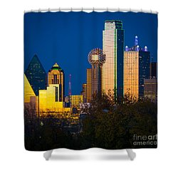 Big D Up Close Shower Curtain by Inge Johnsson