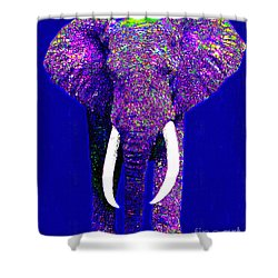 Big Elephant 20130201m118 Shower Curtain by Wingsdomain Art and Photography